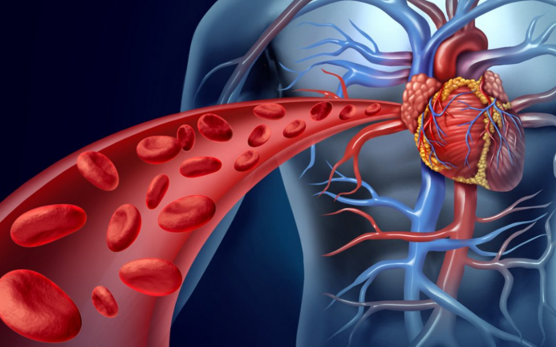 Cardiometabolic Series – Part 1
