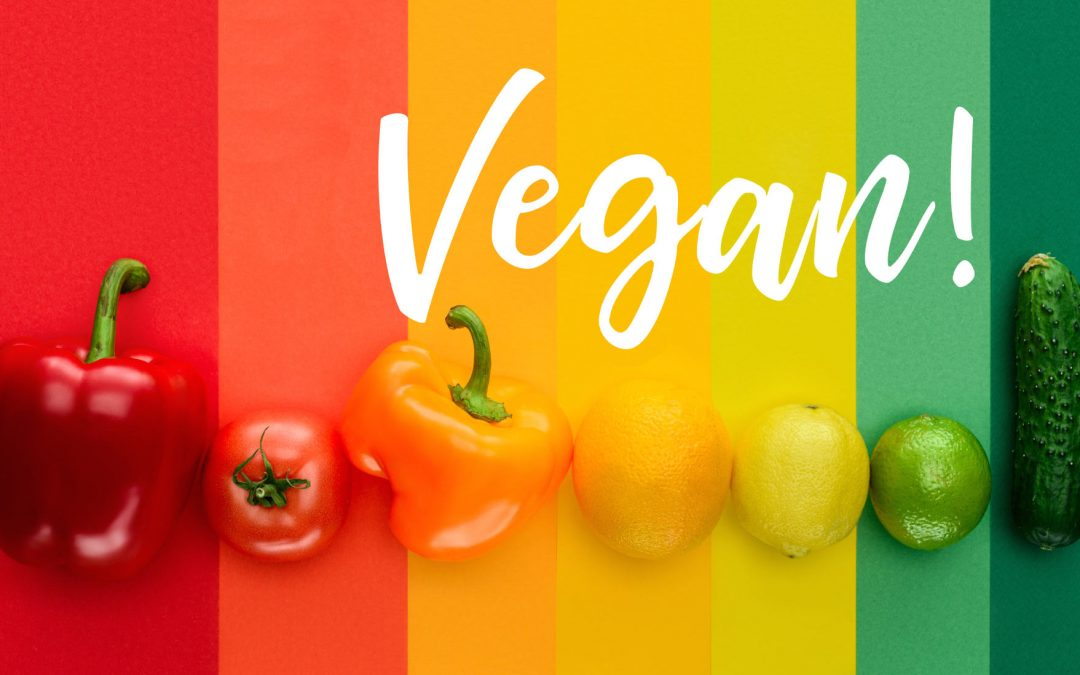 Vegan Diets – Person Centred Practice