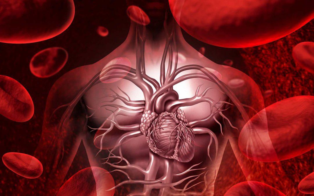 Cardiometabolic Series – Part 2
