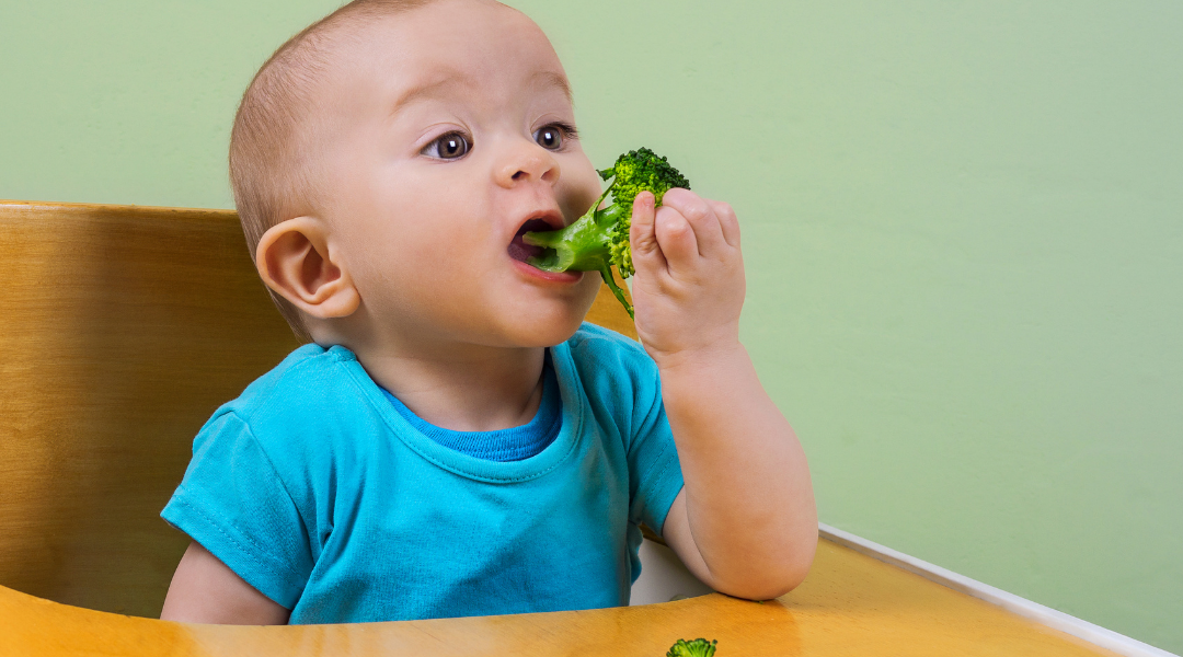 The latest on complementary feeding for babies and young children