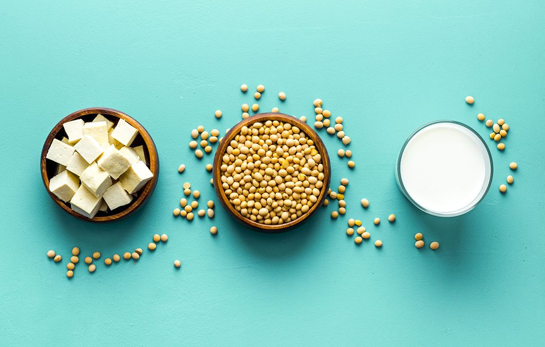 Roundtable on Soya Nutrition Health and Sustainability