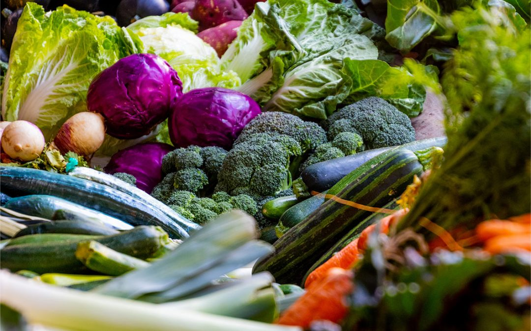 National Food Strategy Digested