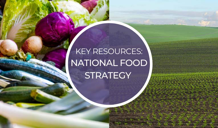 Key Resources: National Food Strategy